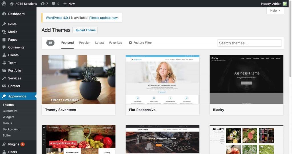 ACTE-Solutions-wordpress-